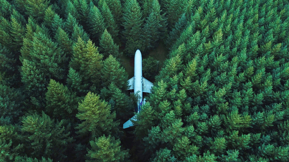 Man Lives Alone In A Boeing 727 In The Woods