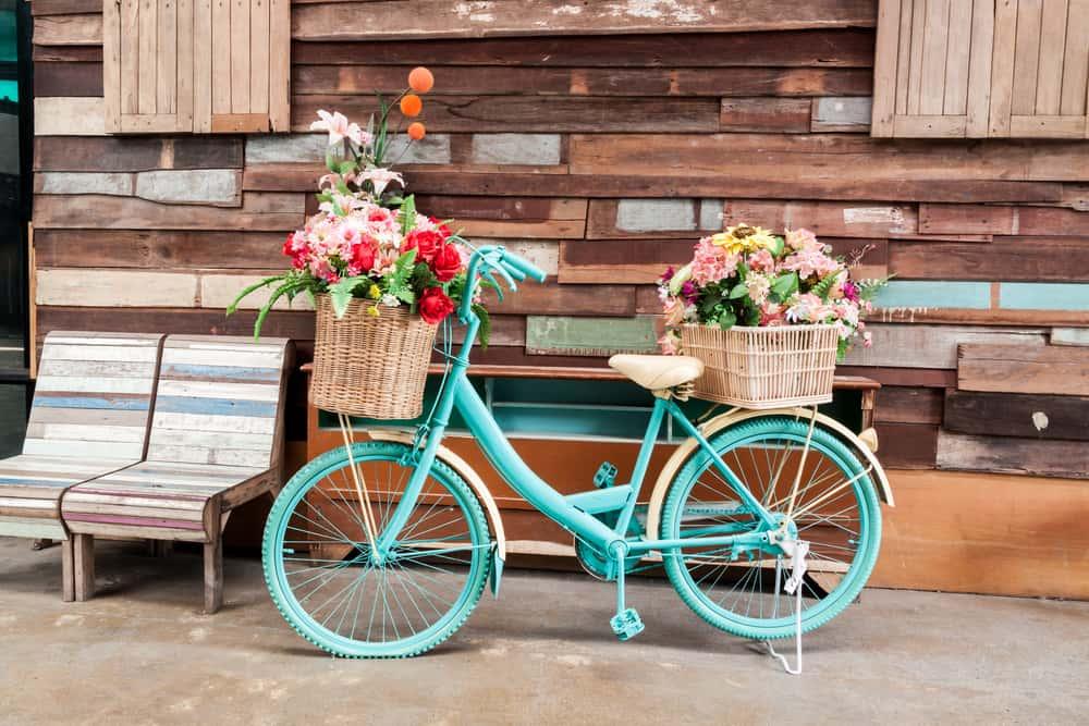 Shutterstock 246101482